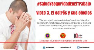Video 3. El estrés